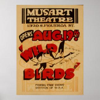 Wild Birds Musart Vintage Theatre WPA Poster