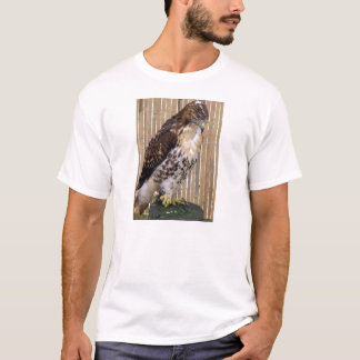 Wild Birds: Red-Tailed Hawk T-Shirt