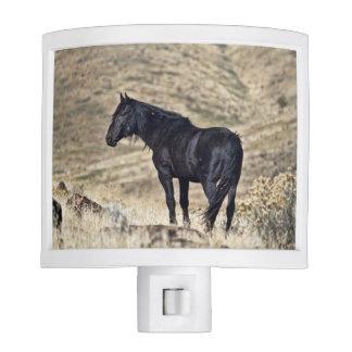Wild Black Mustang Horse Night Light