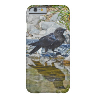 Wild Black Raven Reflected in Pool Barely There iPhone 6 Case