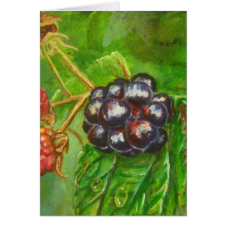 Wild Blackberries ripening in Summer Card