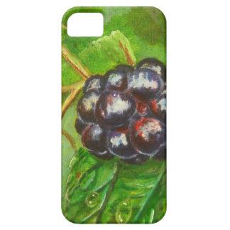 Wild Blackberries ripening in Summer iPhone 5 Case
