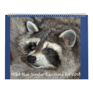 Wild Blue Yonder Raccoons of 2018 Wall Calendars