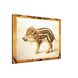 WILD BOAR PIGLET Animal Drawing Canvas Print