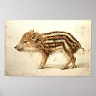 WILD BOAR PIGLET / Animal Drawings Poster