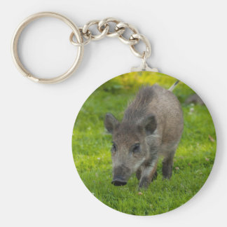 wild boar search for love keychain