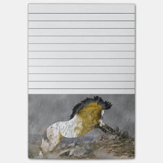 Wild Buckskin Appaloosa Horse Post-it® Notes