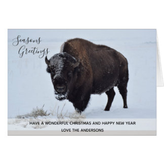 Wild Buffalo Bison Christmas Winter Snow Custom Card