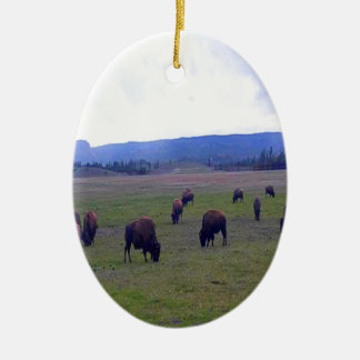 Wild Buffaloes Ceramic Oval Ornament