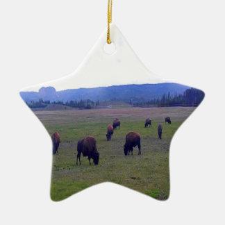 Wild Buffaloes Ceramic Star Ornament