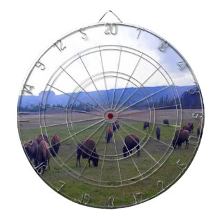 Wild Buffaloes Dartboards