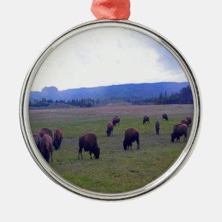 Wild Buffaloes Metal Ornament