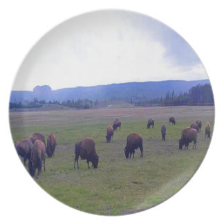 Wild Buffaloes Party Plates
