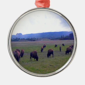 Wild Buffaloes Silver-Colored Round Ornament