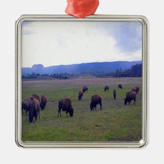 Wild Buffaloes Silver-Colored Square Ornament