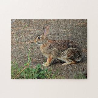 Wild Bunny Puzzle