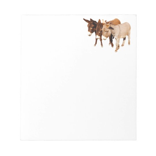 Wild Burro Buddies Notepad