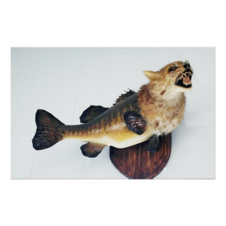 Wild Cat CatFish Bass Funny Taxidermy Poster Art