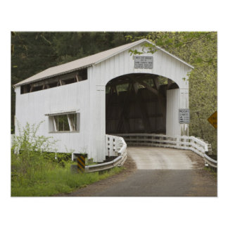 Wild Cat covered bridge, Lane County, Oregon Poster