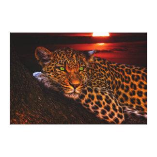 Wild Cat Leopard Canvas Print
