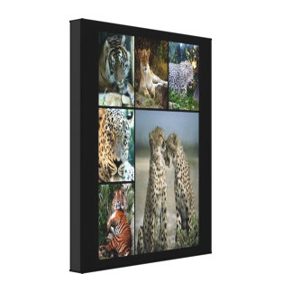 Wild cats collage Wrapped Canvas