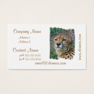 Wild Cheetah Business Cards