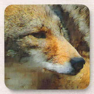 Wild Coyote - Painted Effect Close Up Photo Beverage Coasters