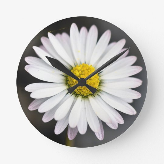 Wild Daisy White and Yellow Wall Clocks