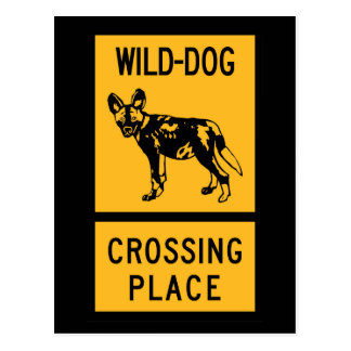 Wild Dog Crossing Place, Sign, Zimbabwe Postcard
