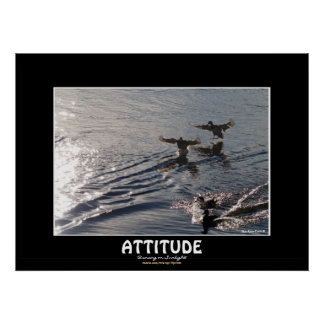 Wild Duck ATTITUDE Motivational Nature Photo Print