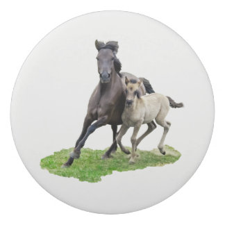 Wild Dulmen Horse Mare with Cute Foal Gallop Photo Eraser
