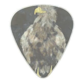 Wild Eagle & Wacky Cow n Calf Clayton Guitar Pick Pearl Celluloid Guitar Pick
