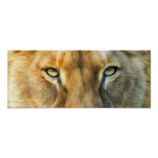 Wild Eyes - African Lioness Art Poster or Print
