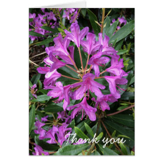 Wild Flower Card
