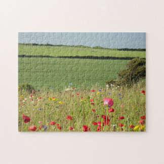 Wild Flower Meadow on the Wild Atlantic Way Jigsaw Puzzle