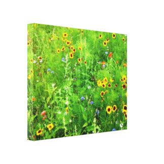 WILD FLOWERS canvas