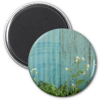 wild flowers nature blue paint fence texture magnet
