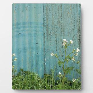 wild flowers nature blue paint fence texture plaque