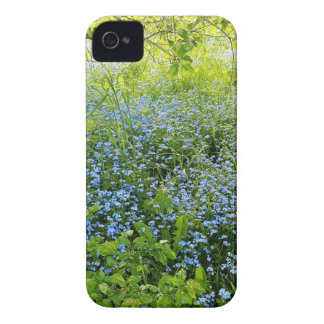 Wild forge me nots flowers photo iPhone 4 case