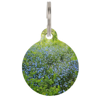 Wild forge me nots flowers photo pet tag