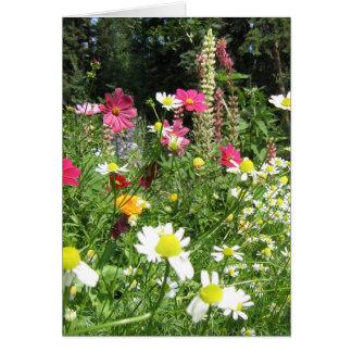 Wild garden card