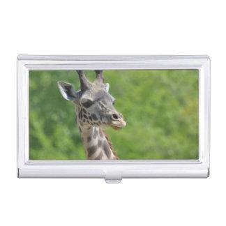 Wild Giraffe Case For Business Cards