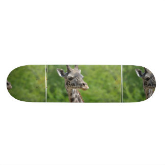 Wild Giraffe Skate Board Decks