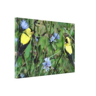 Wild Goldfinch Finch Bird Wildlife Animal Flowers Canvas Print