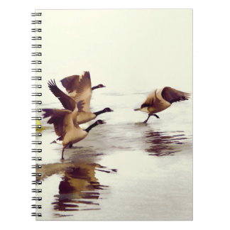"""""""Wild Goose Chase""""   -  Running Geese Notebooks"""