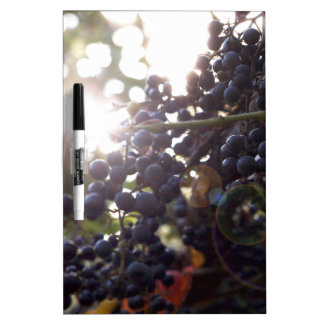 Wild Grapes Dry Erase Board