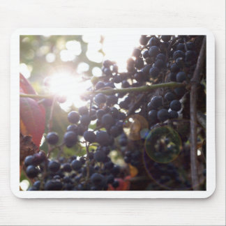 Wild Grapes Mouse Pad