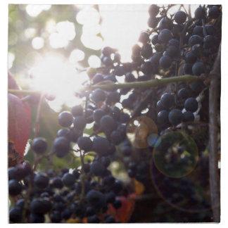 Wild Grapes Napkin