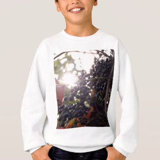 Wild Grapes Sweatshirt