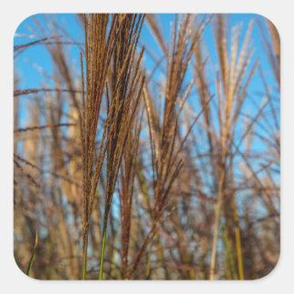 Wild Grass Square Sticker